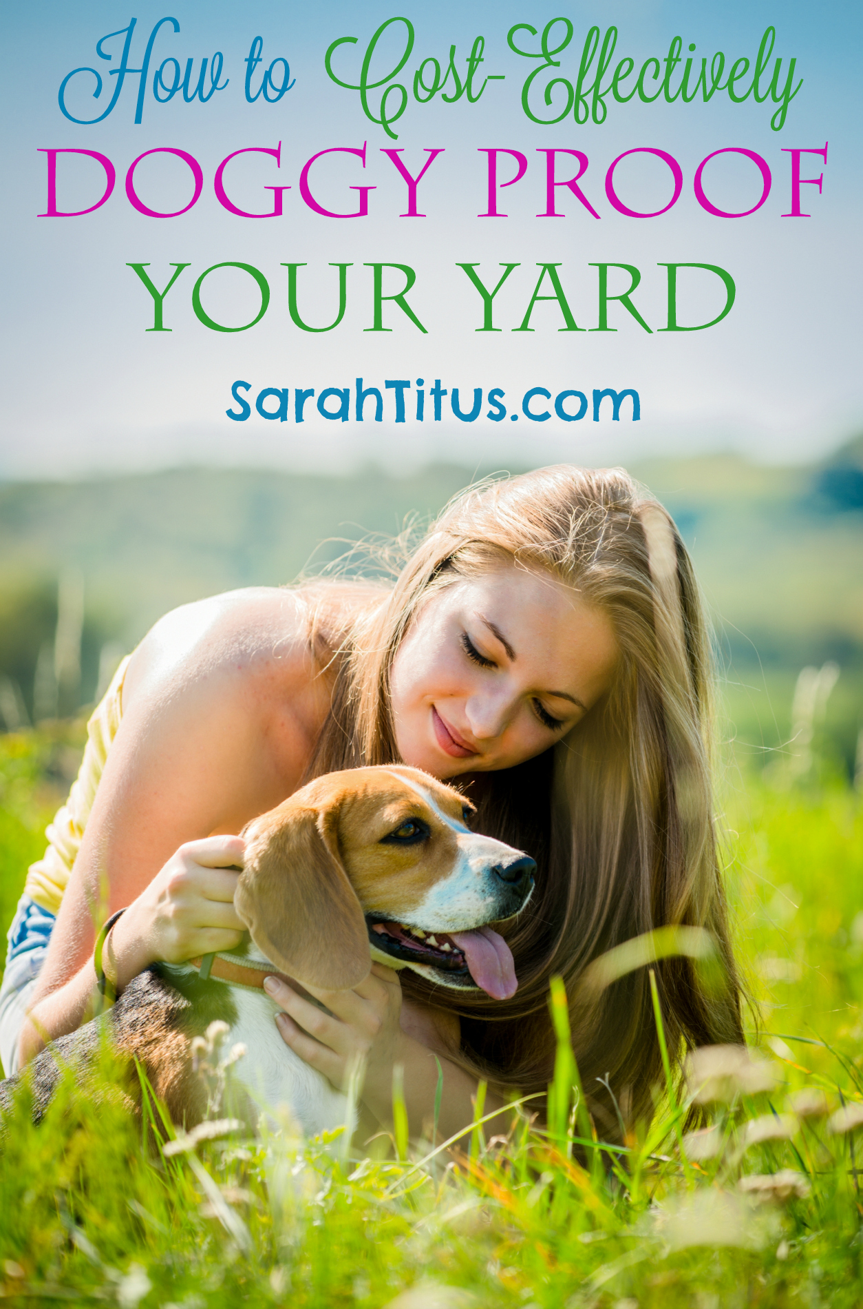 How to Doggy Proof Your Back Yard
