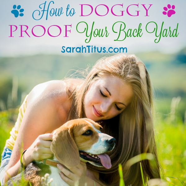 How To Doggy Proof Your Back Yard Sarah Titus