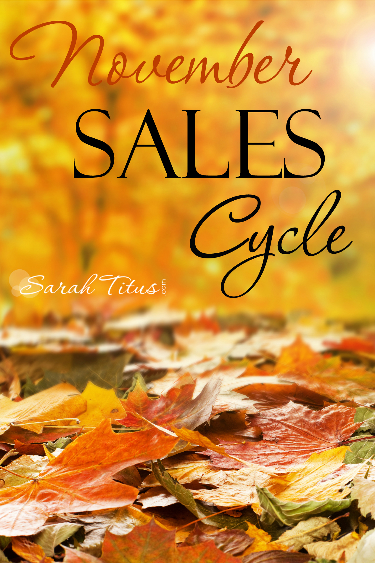 November Sales Cycle: What to Expect to See On Sale