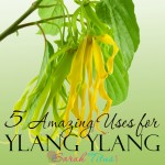 5 Amazing Uses for Ylang Ylang