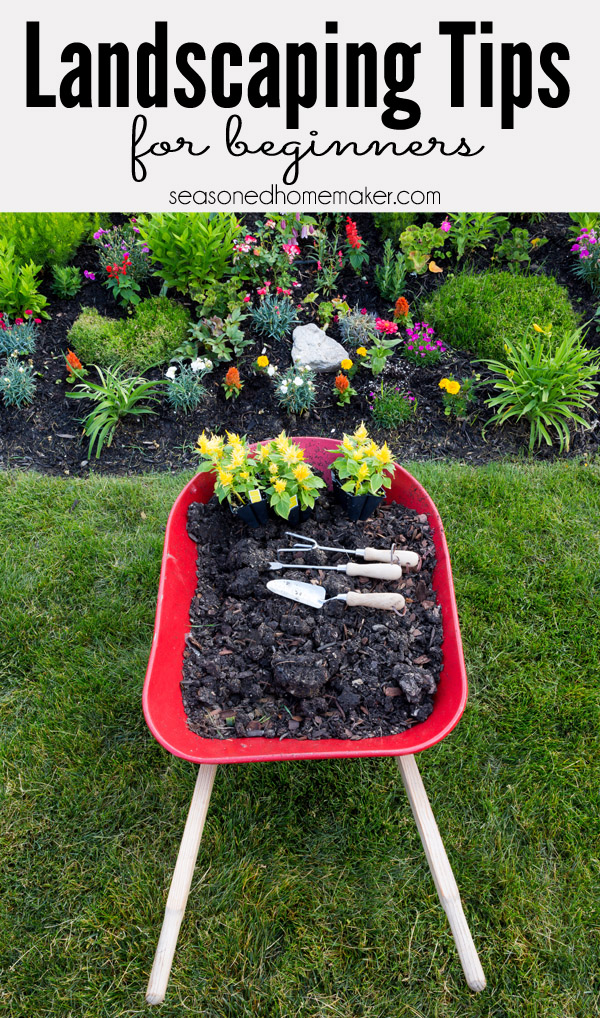 Landscaping-Tips-for-Beginners1