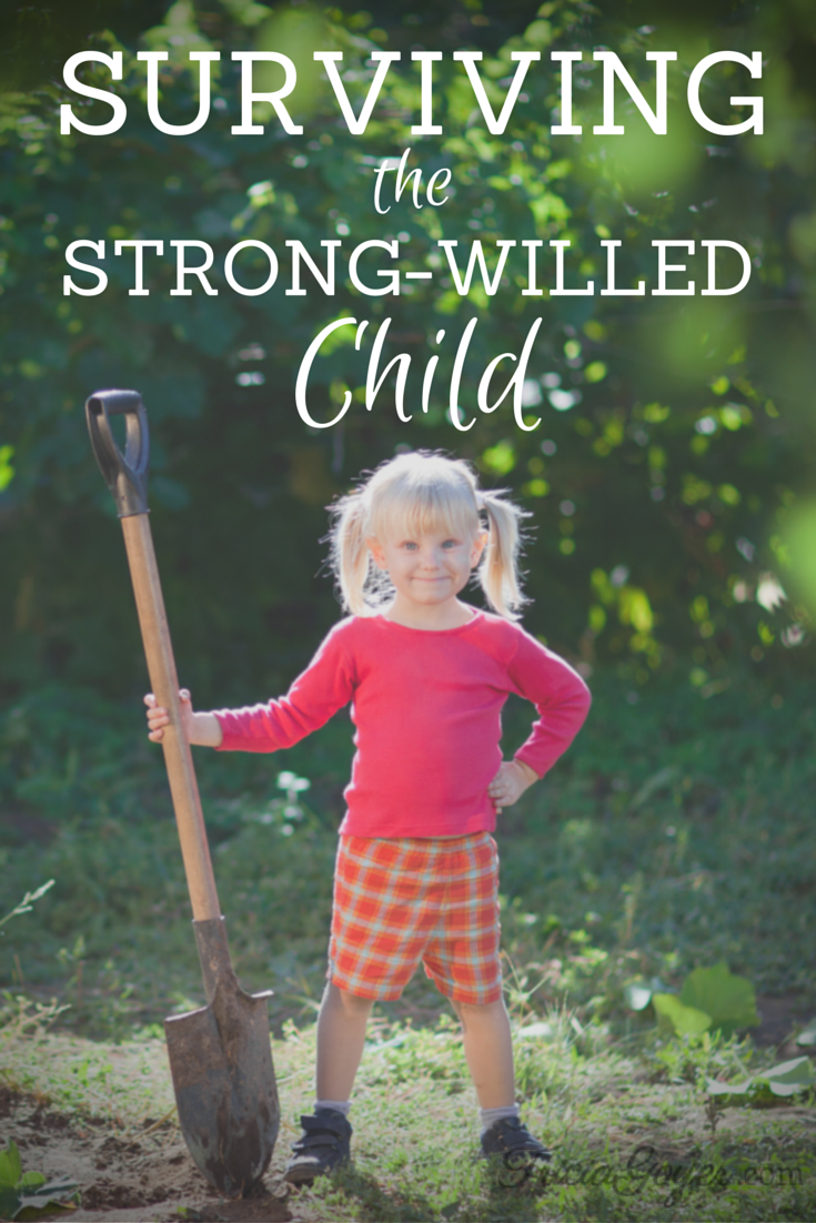 A great resource if you have a strong willed child in your home!