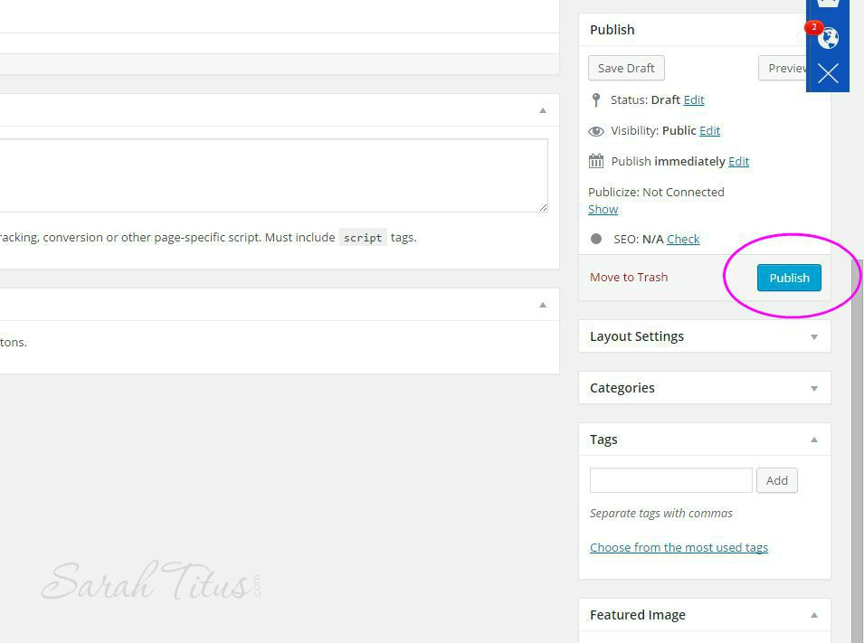 Publish button on your wordpress post