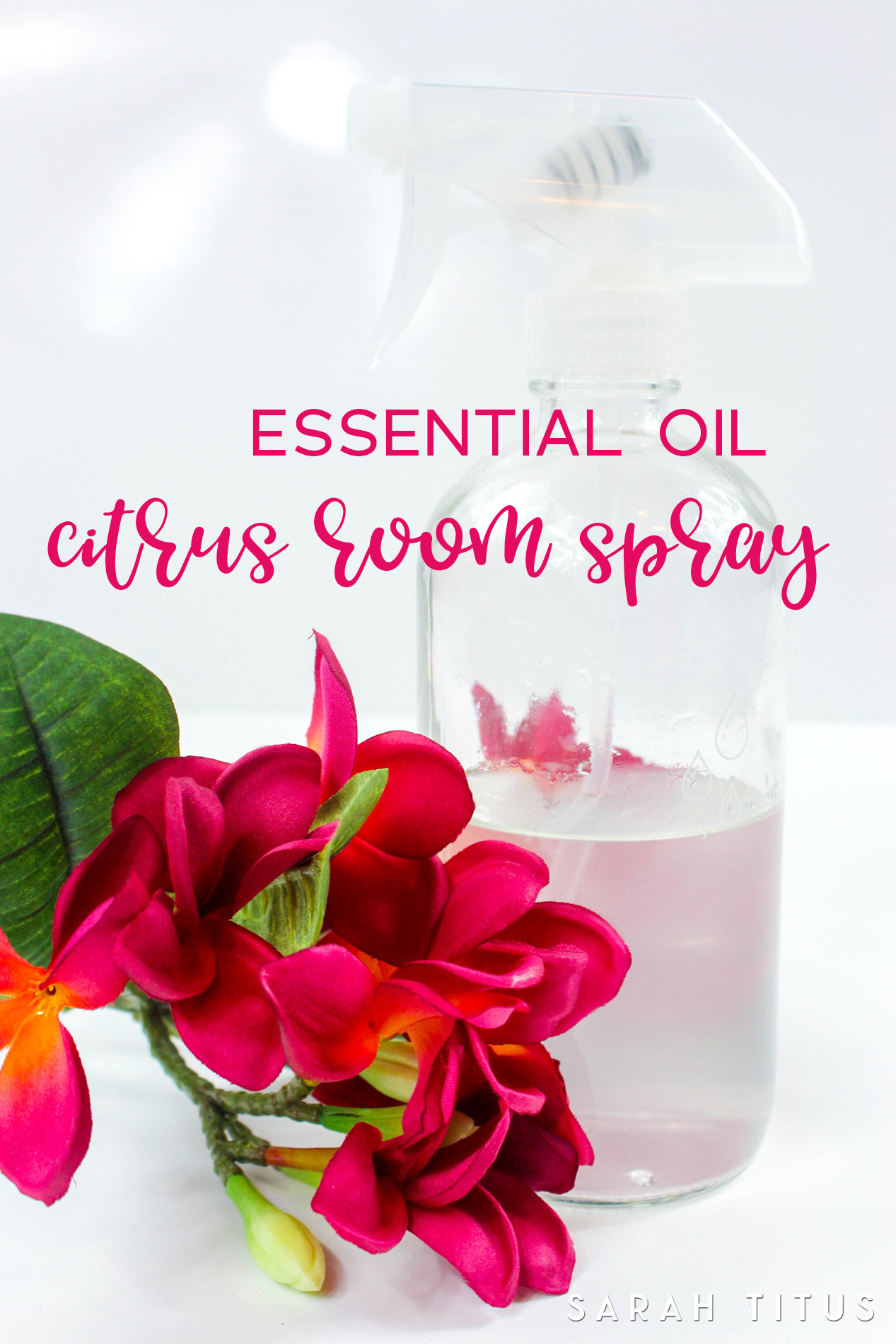 Whenever company is coming, I take out my essential oil citrus room spray and spray it in the air. Smells like a nice, fresh, clean home!