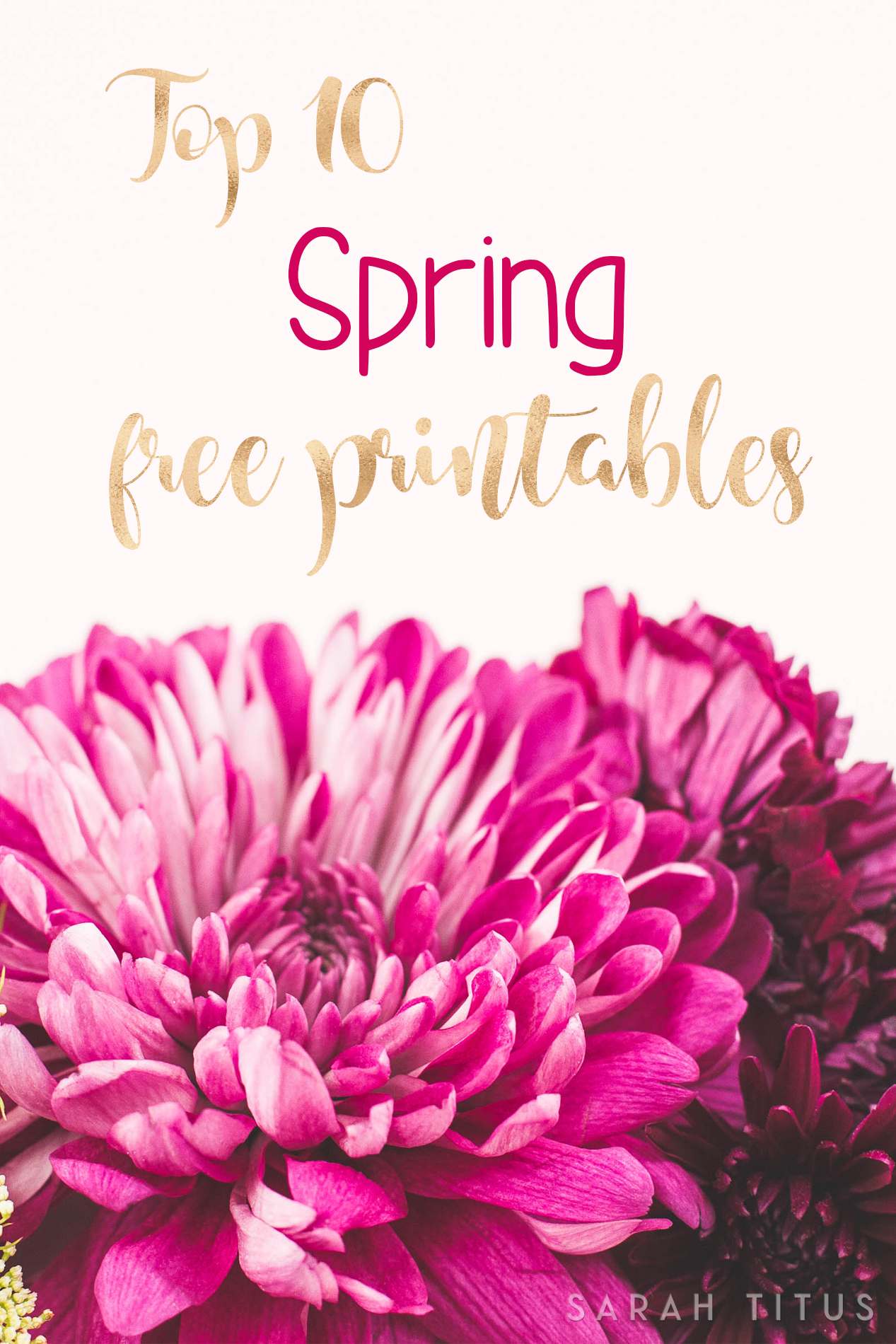 Can you believe winter is over? A new season is coming with tons of life and warmth! You have no idea how much I love warm weather, and to celebrate with you I am bringing you my Top 10 Spring Free Printables. I hope you like them and find them useful!