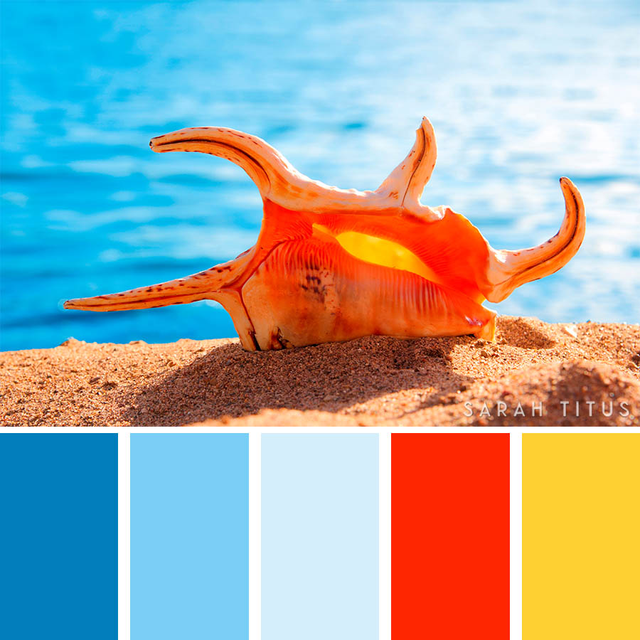 Don't lose your mind trying to figure out what colors go well together. These 25 Ocean Inspired Color Palettes will give all the inspiration you need to get the most beautiful results on all of your projects.